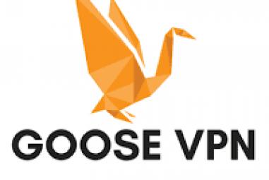 Avis sur Goose VPN : est-il à la hauteur ?